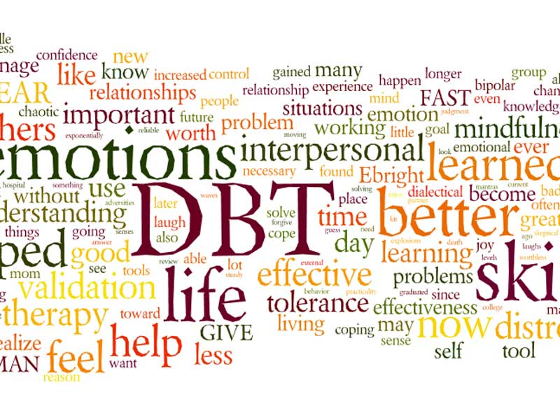 Dialectical Behavioral Training