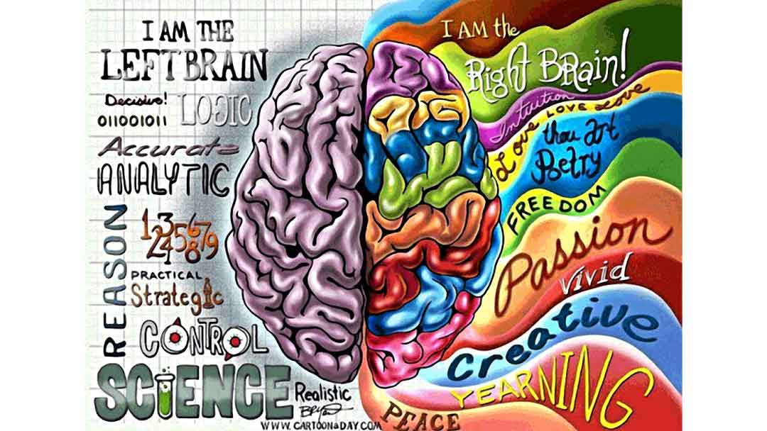 Image of right and left sides of the brain (analytical and artistic) 4th Annual Dementia Conference Wednesday 10/11/2017 07:30 AM - 04:30 PM McHenry Country Club 820 N. John Street, McHenry, IL 60050 for more information contact BBHW at 888-261-2178